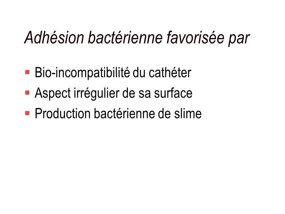 Adhésion bactérienne favorisée par