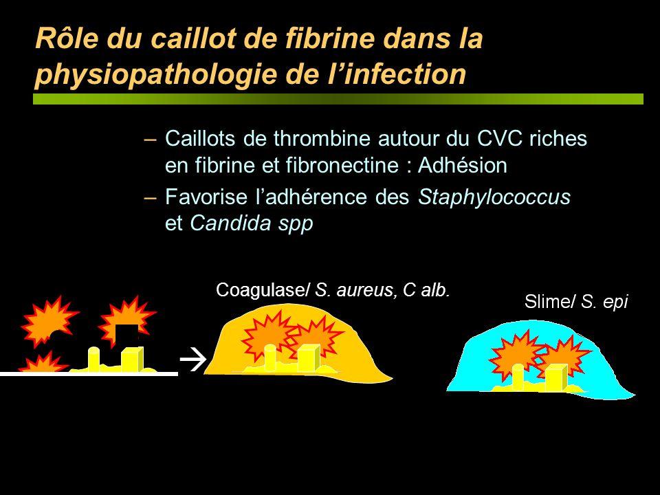 Rôle du caillot de fibrine dans la physiopathologie de l'infection