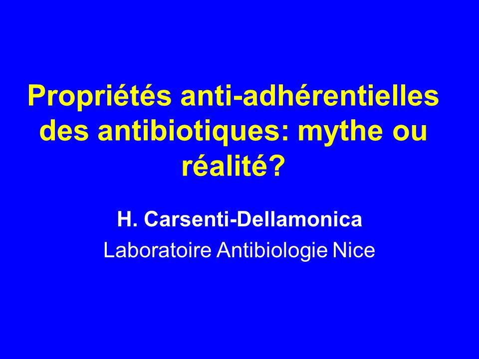 Propriétés anti-adhérentielles des antibiotiques: mythe ou réalité