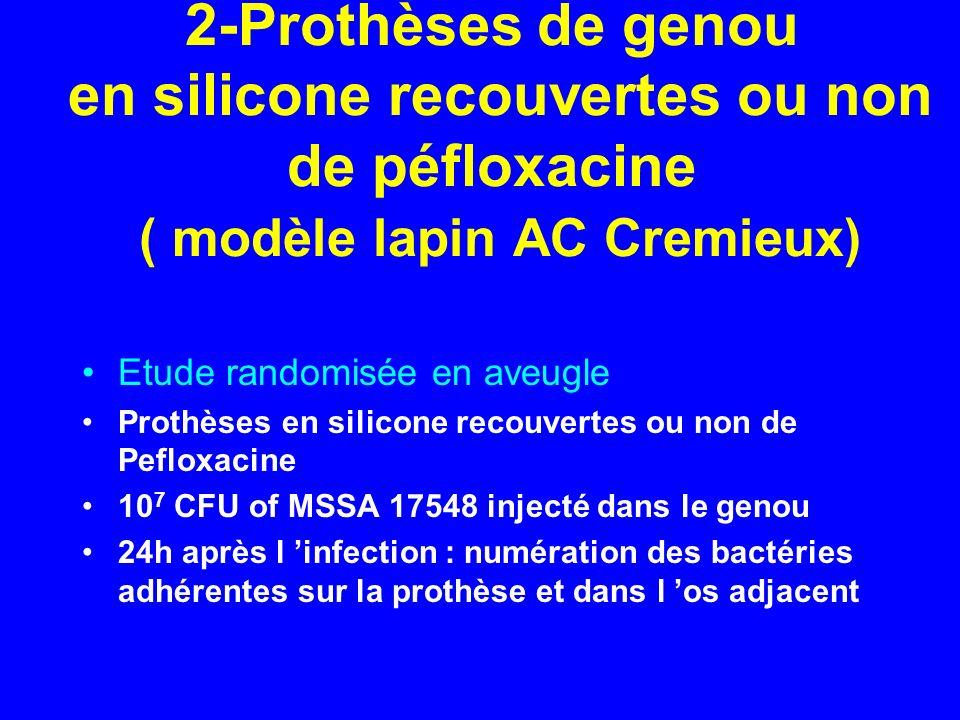 2-Prothèses de genou en silicone recouvertes ou non de péfloxacine ( modèle lapin AC Cremieux)