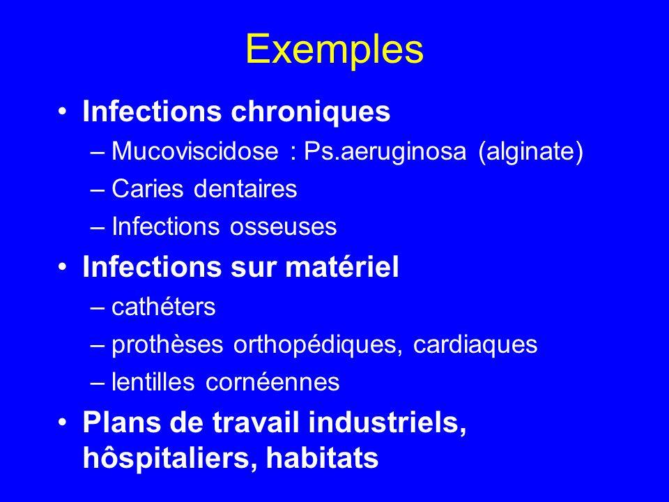 Exemples Infections chroniques Infections sur matériel
