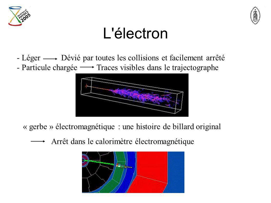 L électron Léger Dévié par toutes les collisions et facilement arrêté