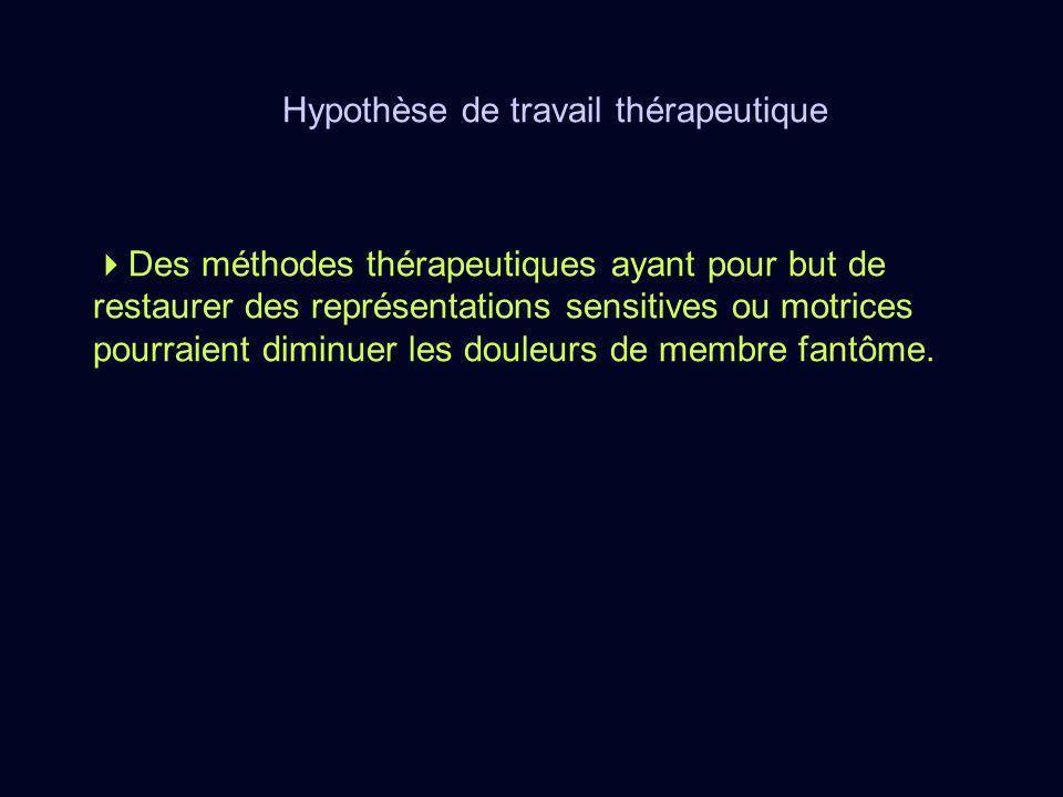 Hypothèse de travail thérapeutique