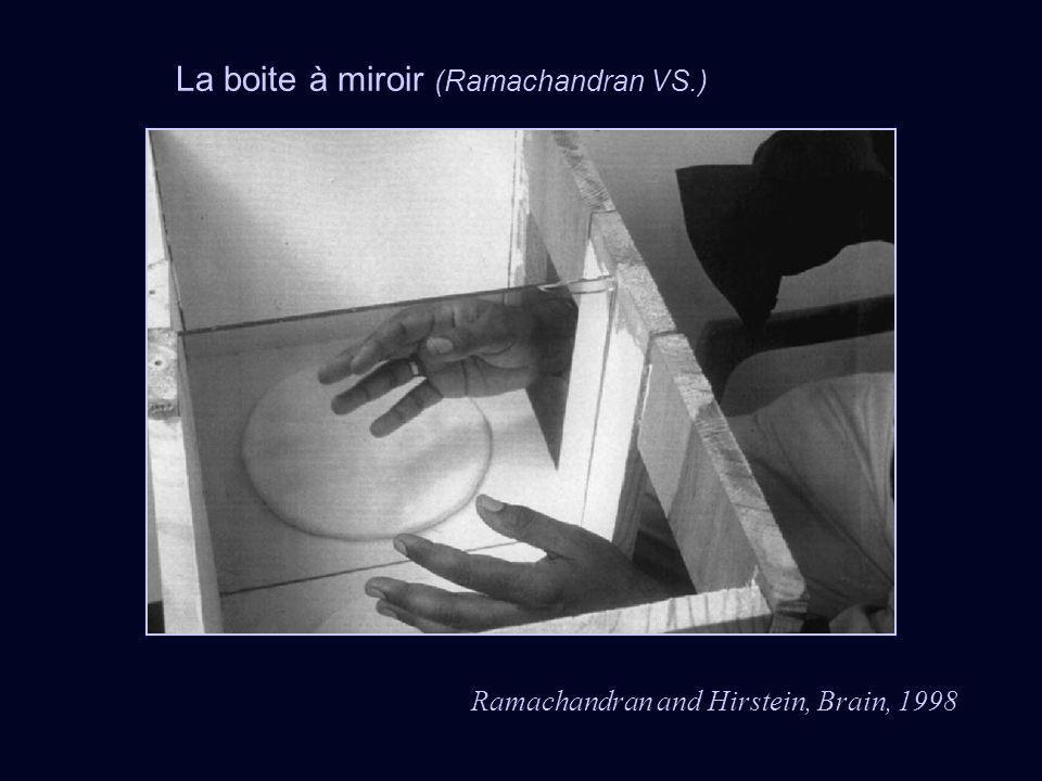 La boite à miroir (Ramachandran VS.)