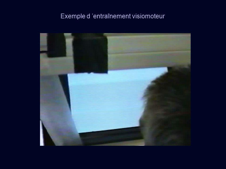 Exemple d 'entraînement visiomoteur