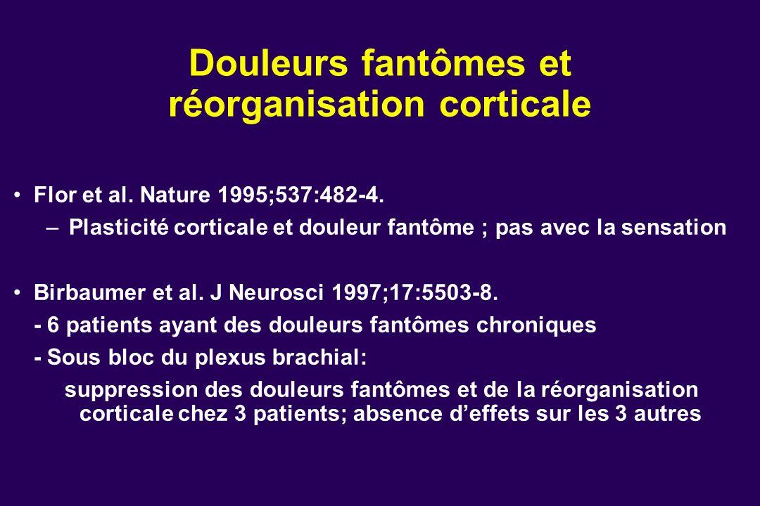 Douleurs fantômes et réorganisation corticale