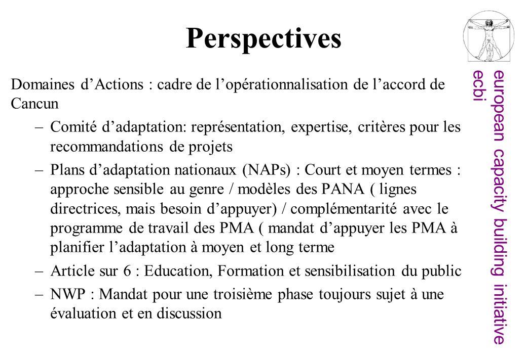 Perspectives Domaines d'Actions : cadre de l'opérationnalisation de l'accord de Cancun.