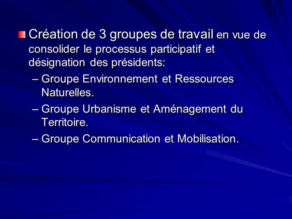 Création de 3 groupes de travail en vue de consolider le processus participatif et désignation des présidents: