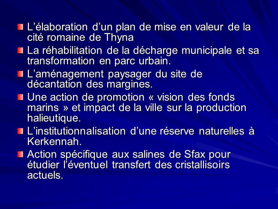 L'élaboration d'un plan de mise en valeur de la cité romaine de Thyna