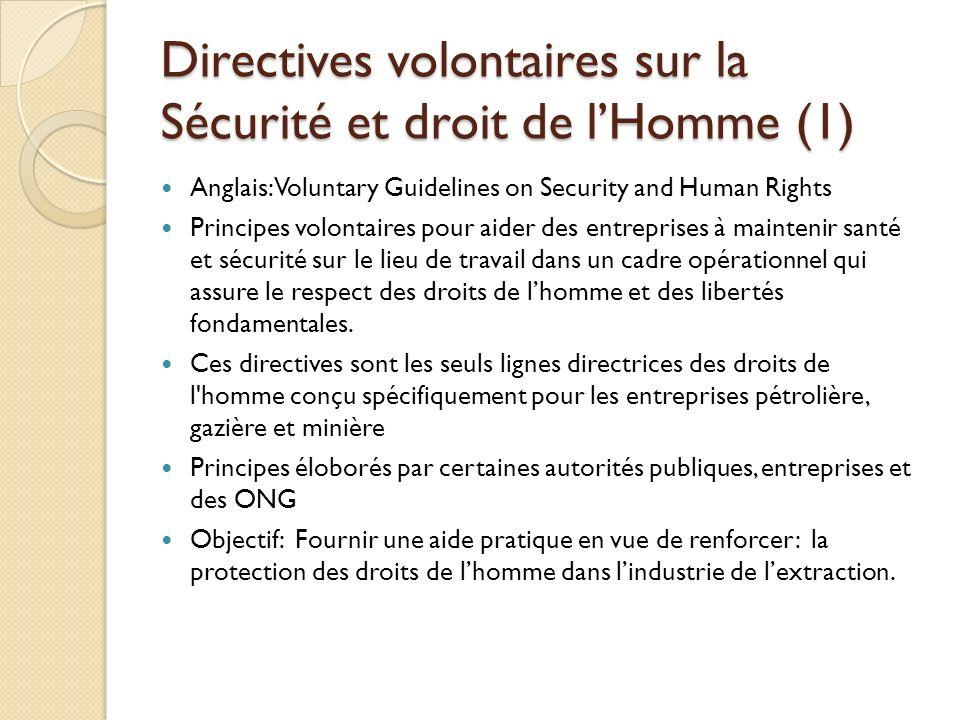 Directives volontaires sur la Sécurité et droit de l'Homme (1)