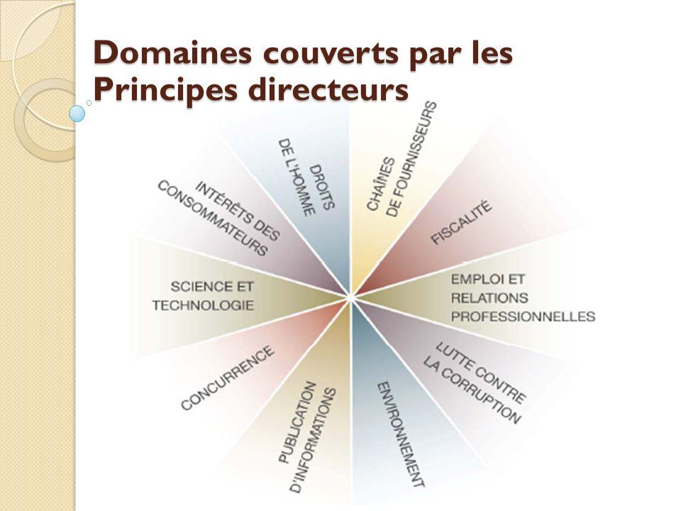 Domaines couverts par les Principes directeurs