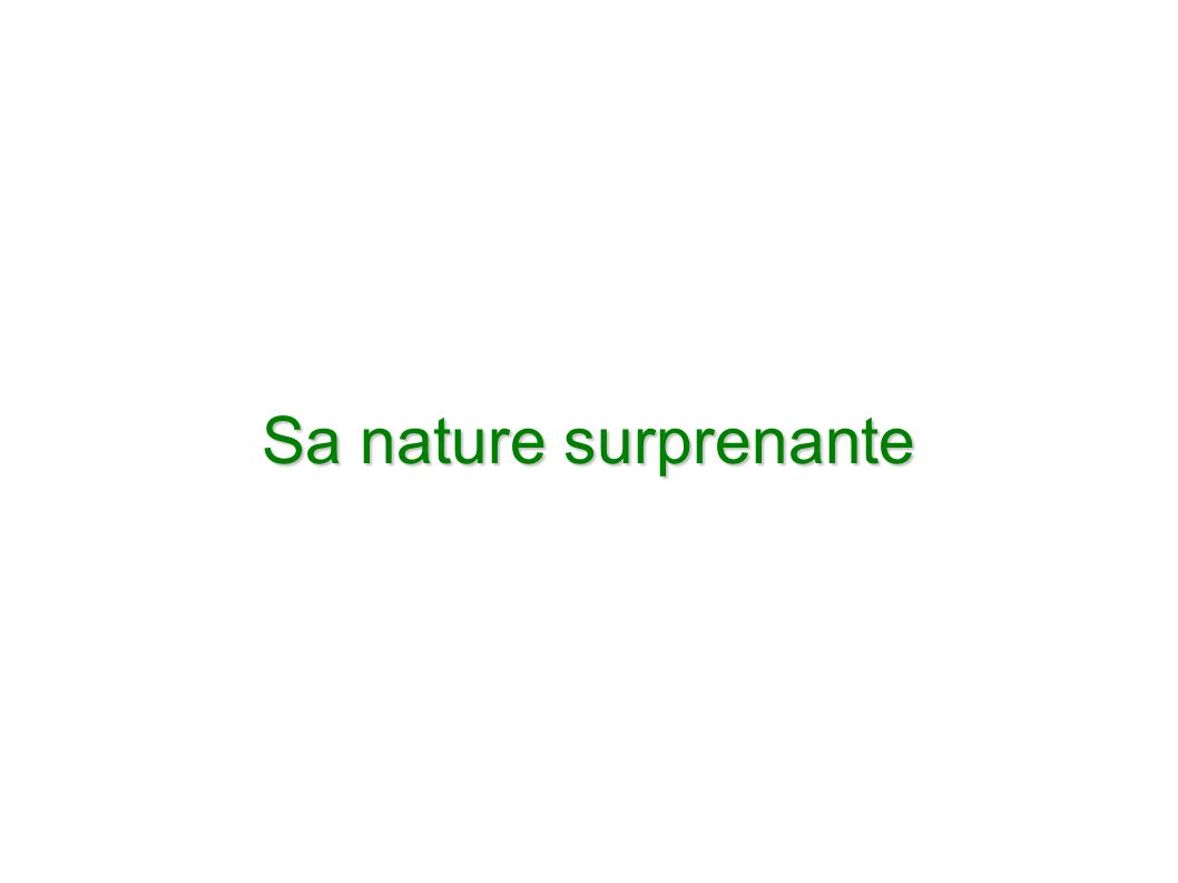 Sa nature surprenante
