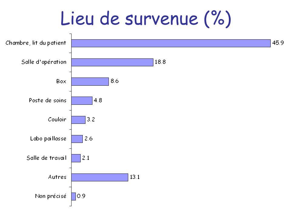 Lieu de survenue (%)