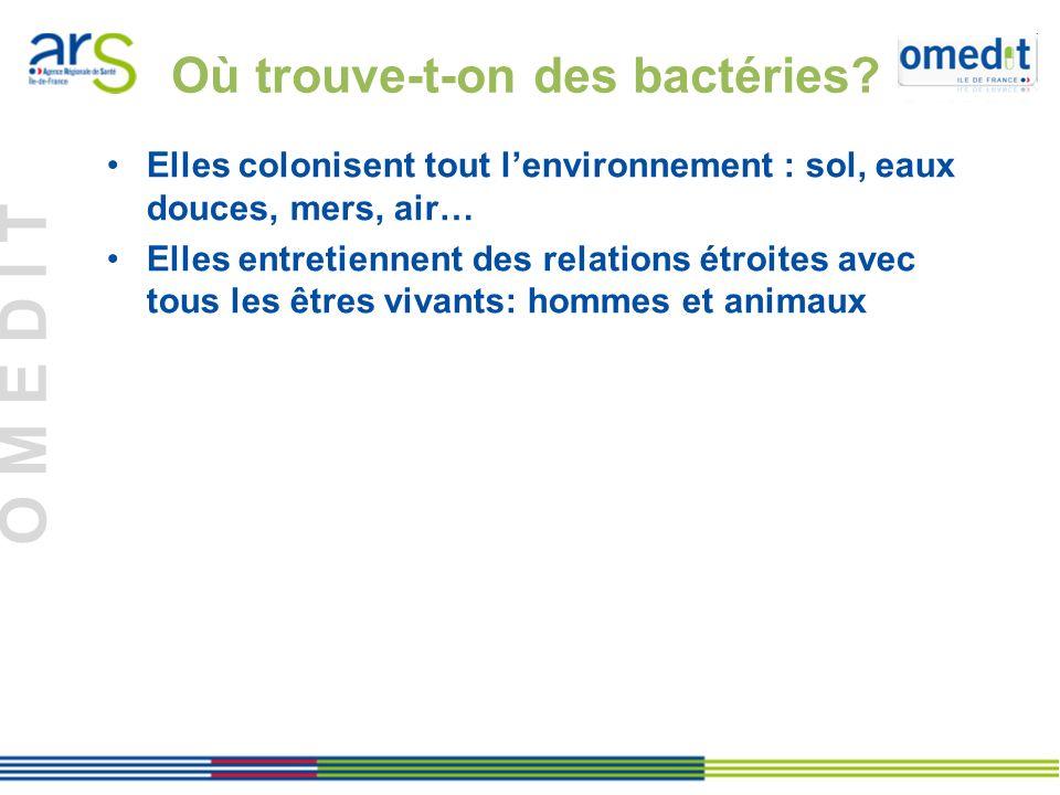 Où trouve-t-on des bactéries