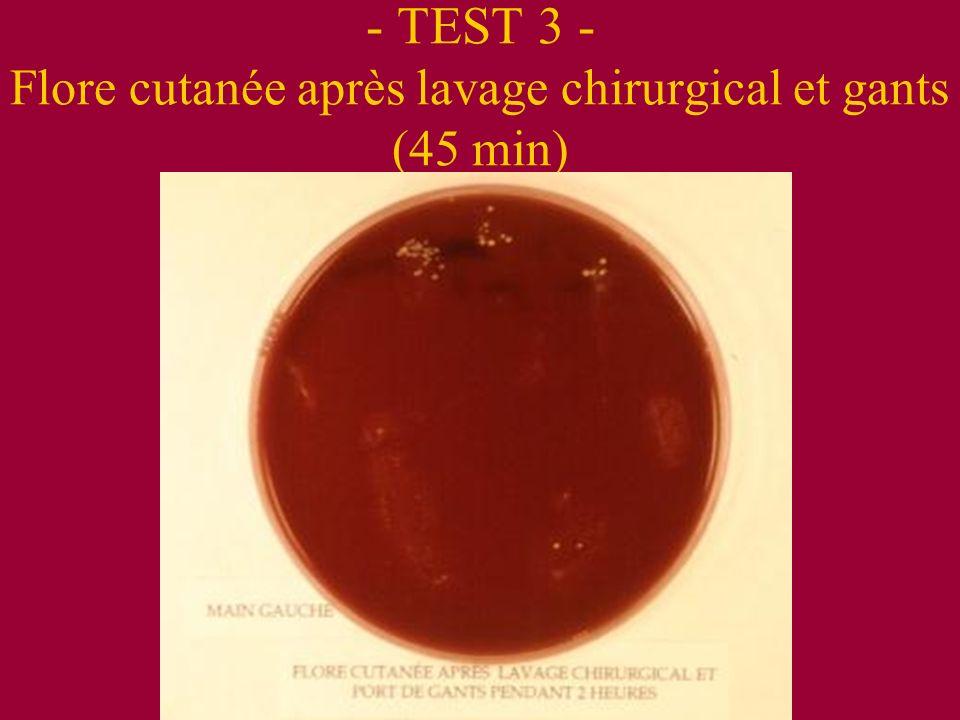 - TEST 3 - Flore cutanée après lavage chirurgical et gants (45 min)