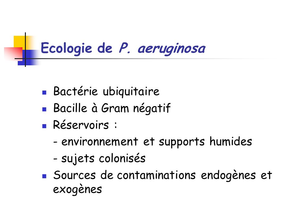 Ecologie de P. aeruginosa