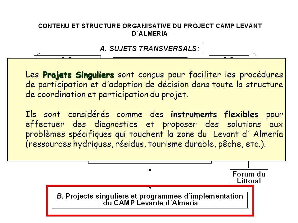 Les Projets Singuliers sont conçus pour faciliter les procédures de participation et d´adoption de décision dans toute la structure de coordination et participation du projet.