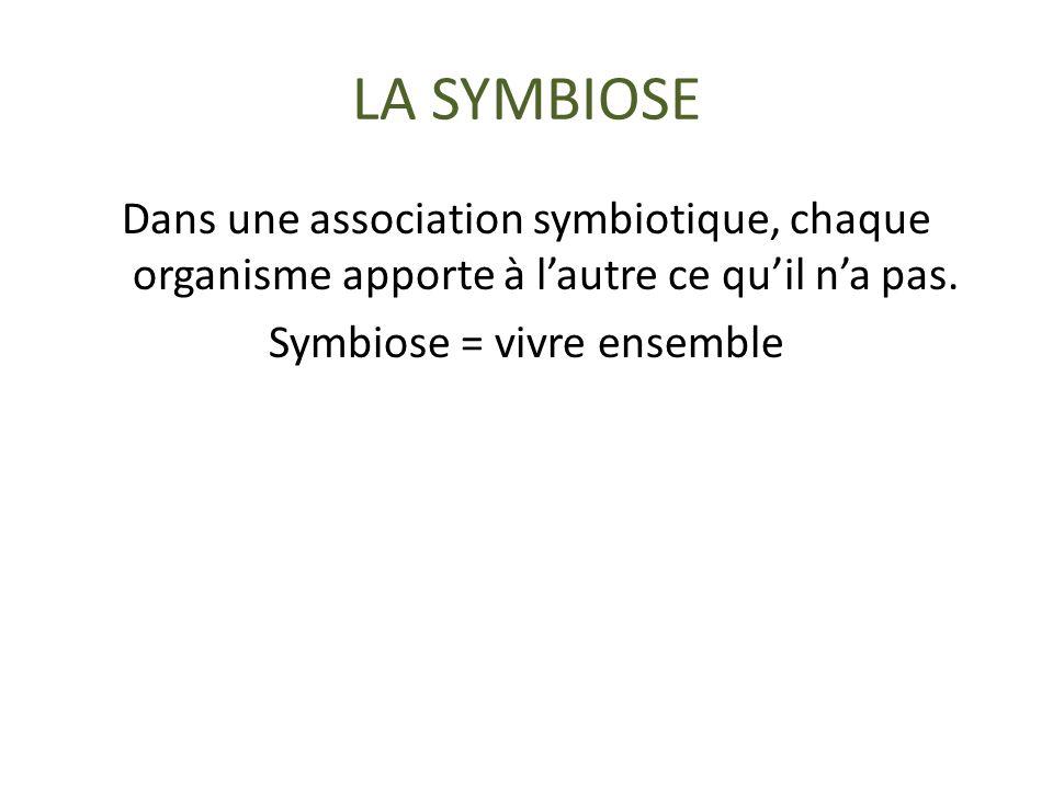 LA SYMBIOSE Dans une association symbiotique, chaque organisme apporte à l'autre ce qu'il n'a pas. Symbiose = vivre ensemble