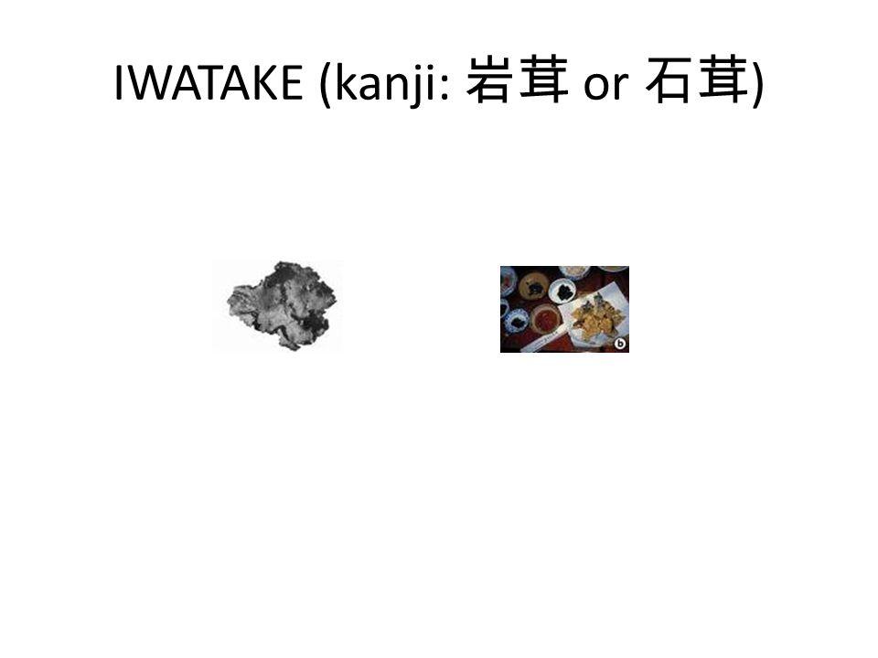 IWATAKE (kanji: 岩茸 or 石茸)