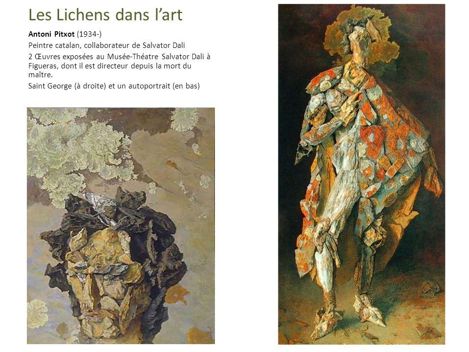 Les Lichens dans l'art Antoni Pitxot (1934-)