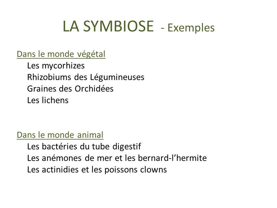 LA SYMBIOSE - Exemples
