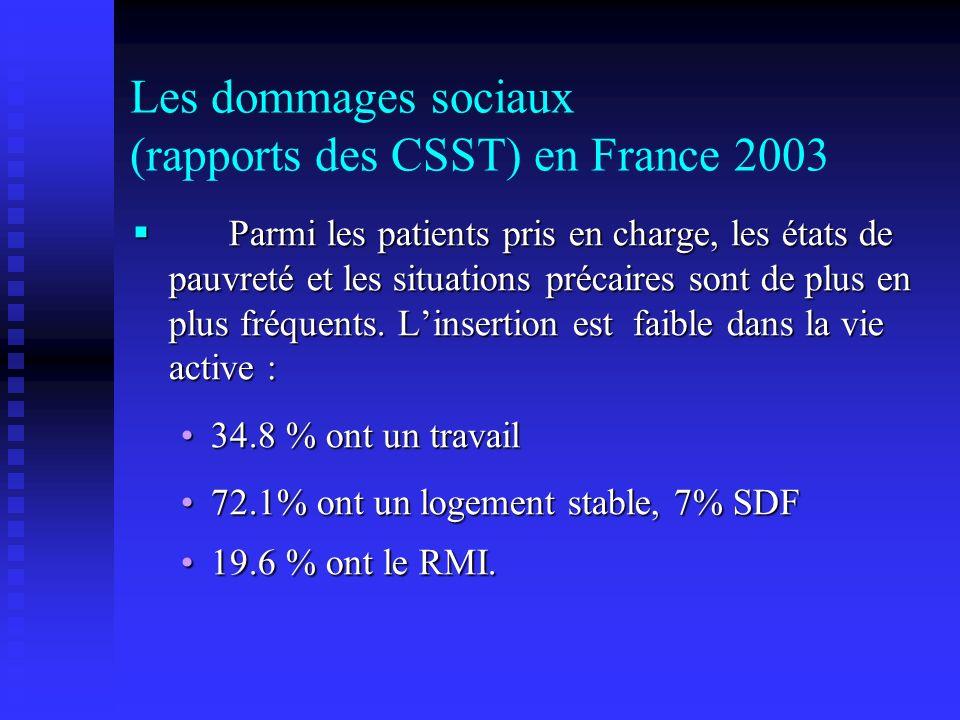 Les dommages sociaux (rapports des CSST) en France 2003