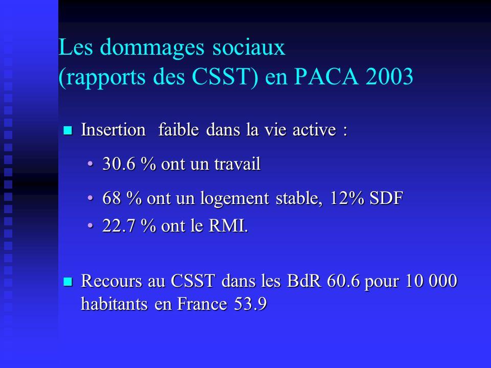 Les dommages sociaux (rapports des CSST) en PACA 2003