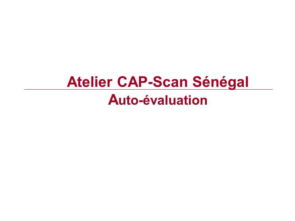 Atelier CAP-Scan Sénégal