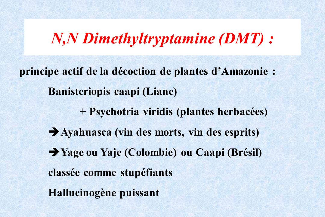 N,N Dimethyltryptamine (DMT) :