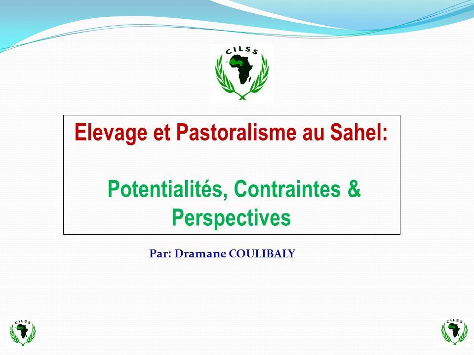 Elevage et Pastoralisme au Sahel: