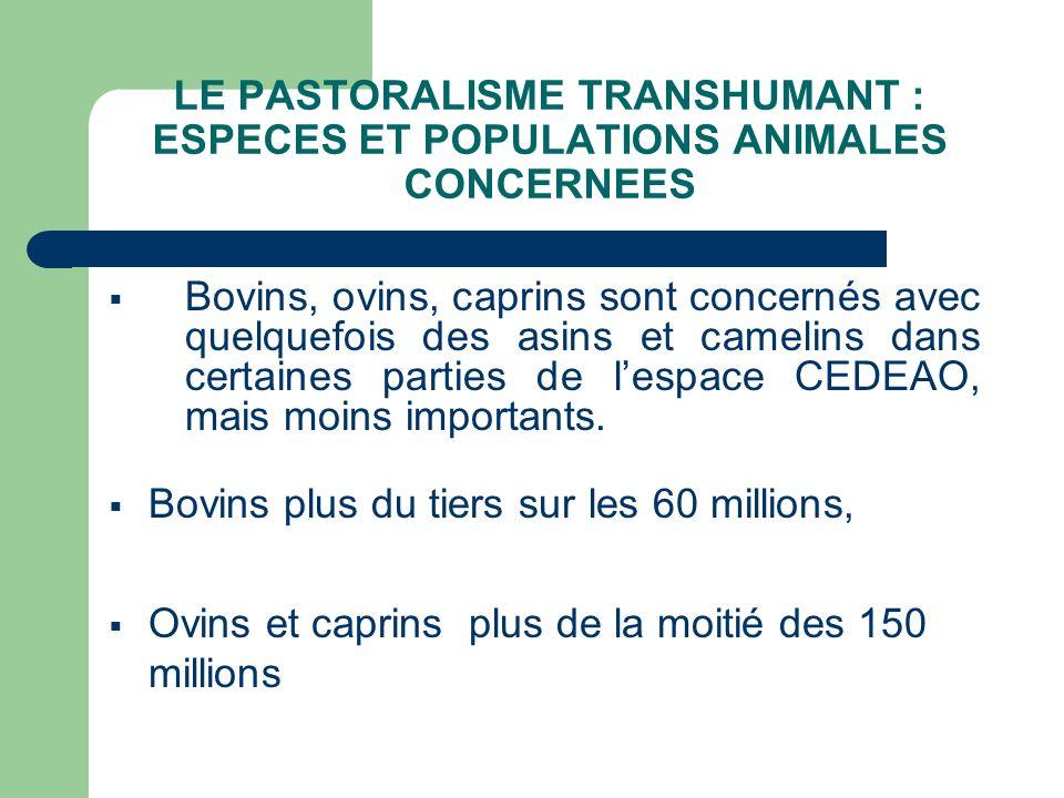 LE PASTORALISME TRANSHUMANT : ESPECES ET POPULATIONS ANIMALES CONCERNEES