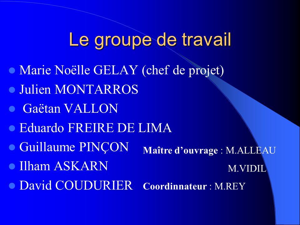 Le groupe de travail Marie Noëlle GELAY (chef de projet)