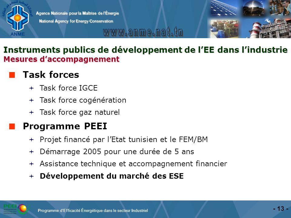 Task forces Programme PEEI