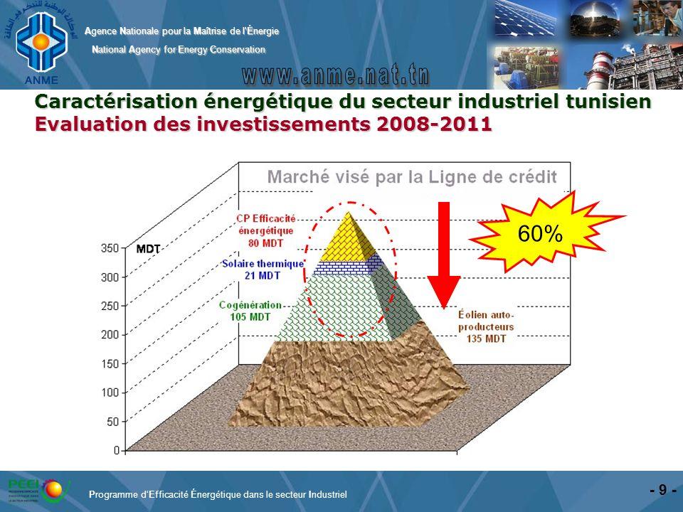 60% Caractérisation énergétique du secteur industriel tunisien