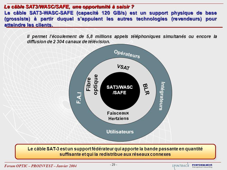 Le câble SAT3/WASC/SAFE, une opportunité à saisir