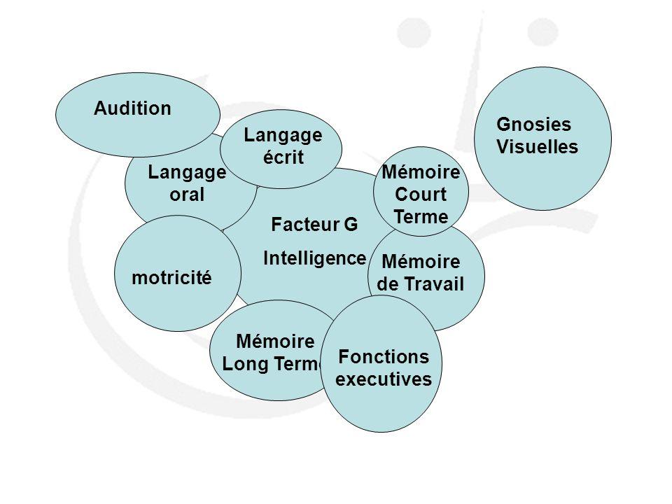 Audition Gnosies Visuelles. Langage écrit. Langage oral. MémoireCourt Terme. Facteur G. Intelligence.