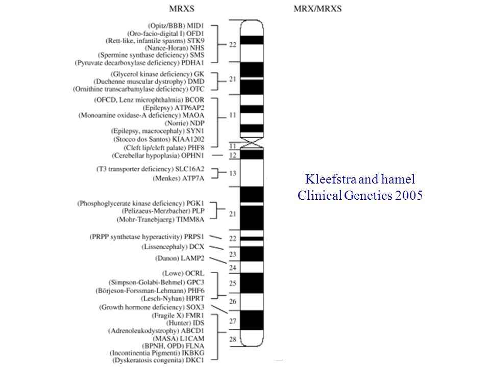 Kleefstra and hamel Clinical Genetics 2005