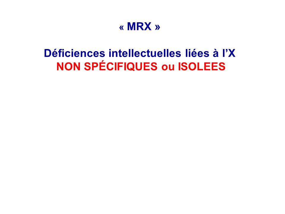 « MRX » Déficiences intellectuelles liées à l'X NON SPÉCIFIQUES ou ISOLEES