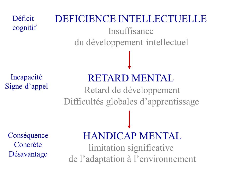 DEFICIENCE INTELLECTUELLE