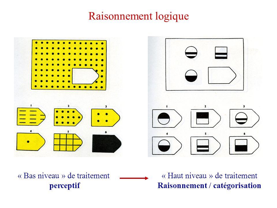 Raisonnement / catégorisation