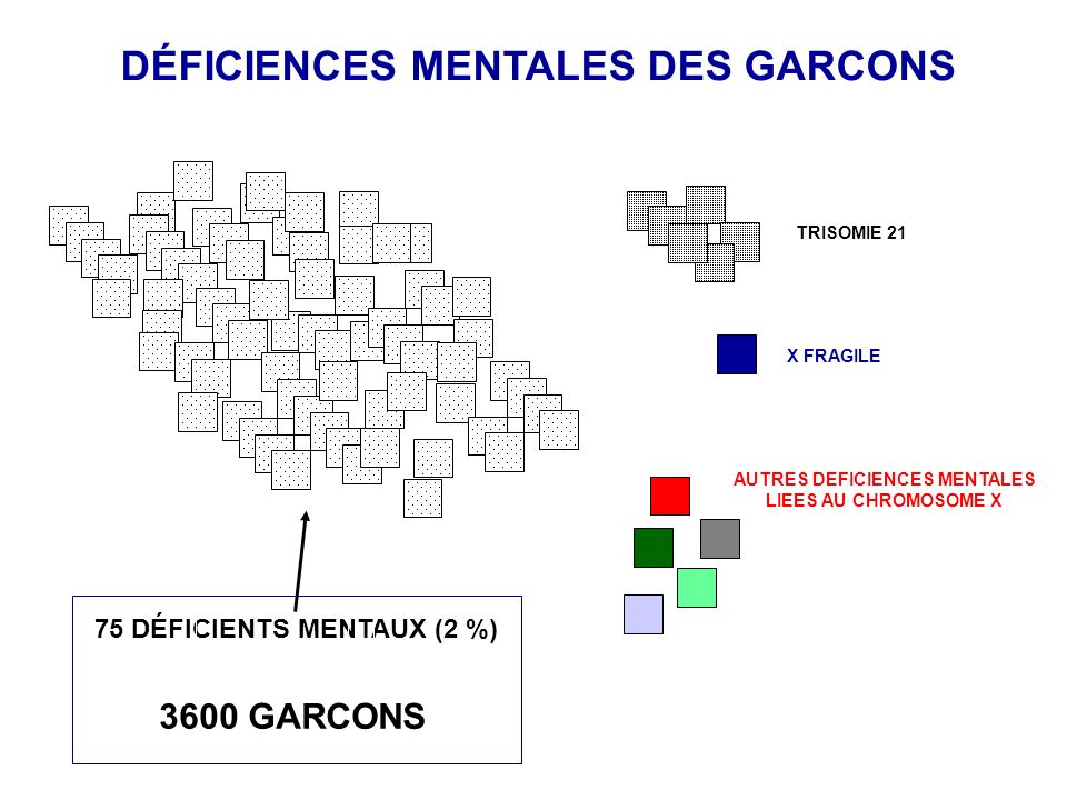 DÉFICIENCES MENTALES DES GARCONS