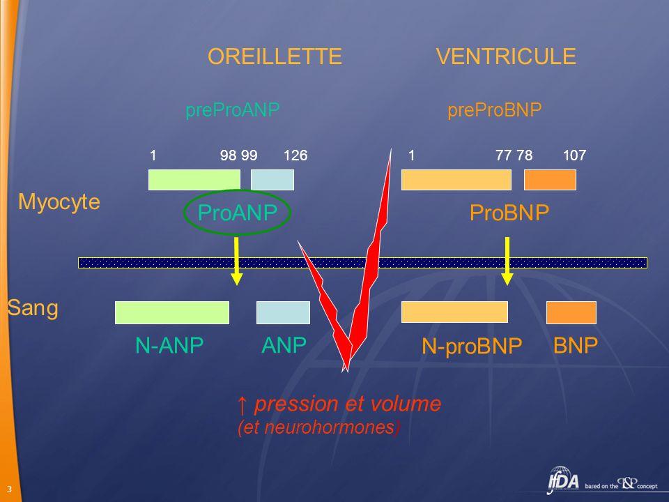 VENTRICULE OREILLETTE ↑ pression et volume Myocyte ProANP ProBNP Sang