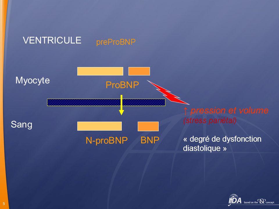 VENTRICULE Myocyte ProBNP ↑ pression et volume Sang N-proBNP BNP