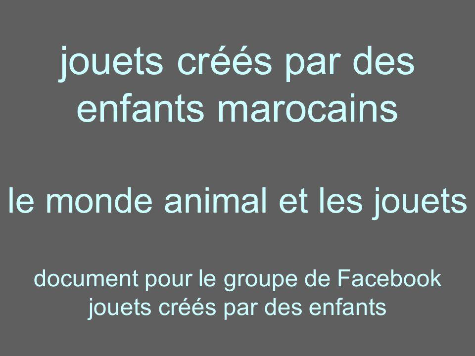 jouets créés par des enfants marocains le monde animal et les jouets document pour le groupe de Facebook jouets créés par des enfants