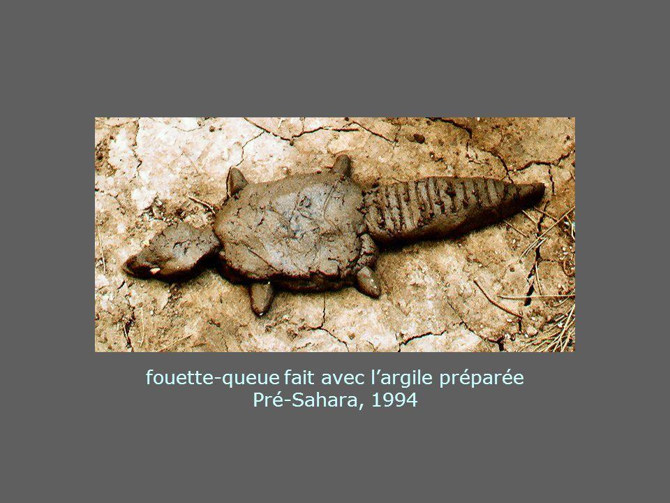fouette-queue fait avec l'argile préparée Pré-Sahara, 1994