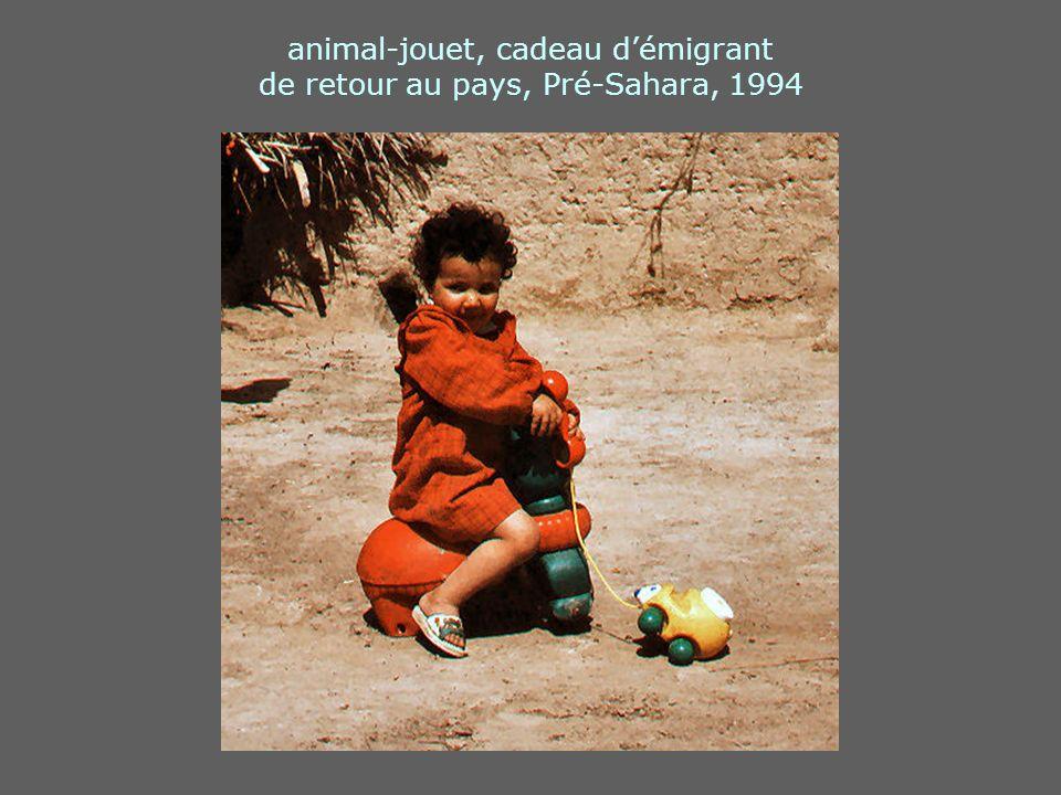 animal-jouet, cadeau d'émigrant de retour au pays, Pré-Sahara, 1994