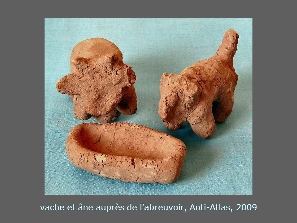 vache et âne auprès de l'abreuvoir, Anti-Atlas, 2009