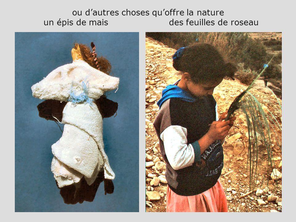ou d'autres choses qu'offre la nature un épis de mais des feuilles de roseau