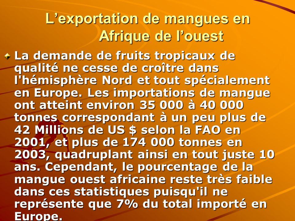 L'exportation de mangues en Afrique de l'ouest