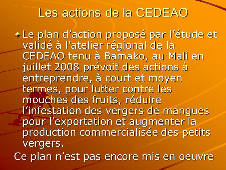 Les actions de la CEDEAO